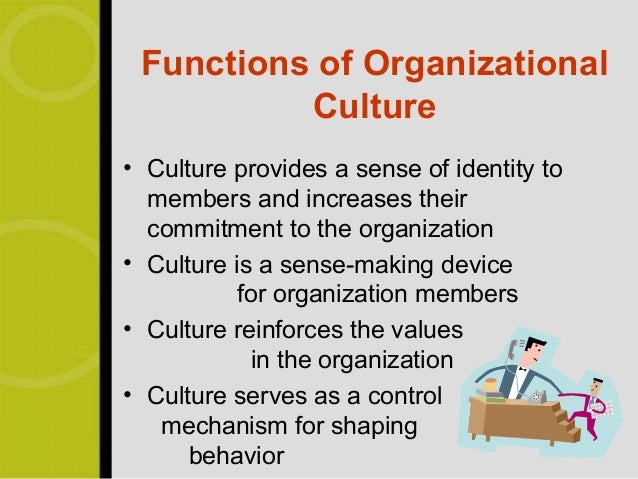 What are the important functions of culture ?