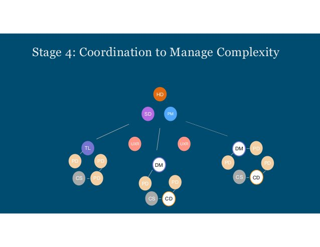 How do these stages resonate? How about the roles? DISCUSSION