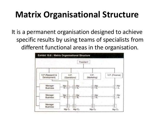 Organizational Chart Structure