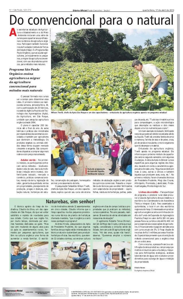 II – São Paulo, 123 (71)IV– São Paulo, 123 (71)                                                                    Diário ...