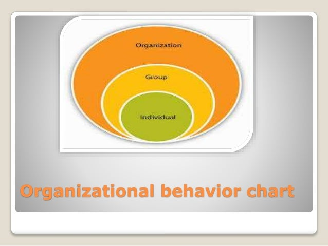 orgnizational behaviour In the master's specialisation in social and organisational psychology you study behaviour in formal and informal groups, such as sports or work teams.