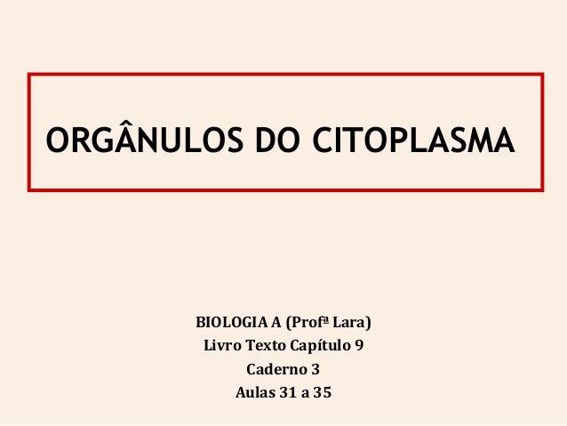 ORGÂNULOS DO CITOPLASMA BIOLOGIA A (Profª Lara) Livro Texto Capítulo 9 Caderno 3 Aulas 31 a 35