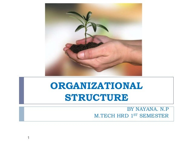 ORGANIZATIONAL STRUCTURE BY NAYANA. N.P M.TECH HRD 1ST SEMESTER  1
