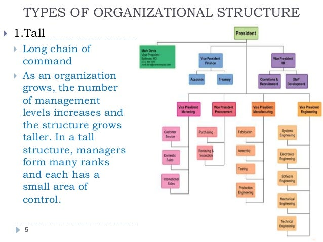 organizational buildings and also varieties connected with provider essay