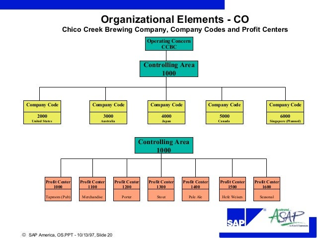Org Structure Sap