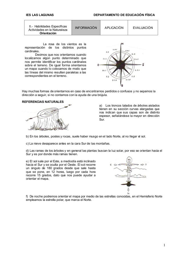 IES LAS LAGUNAS                                    DEPARTAMENTO DE EDUCACIÓN FÍSICA    II.- Habilidades Específicas       ...