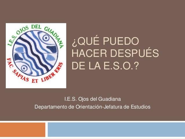 ¿QUÉ PUEDO               HACER DESPUÉS               DE LA E.S.O.?            I.E.S. Ojos del GuadianaDepartamento de Orie...