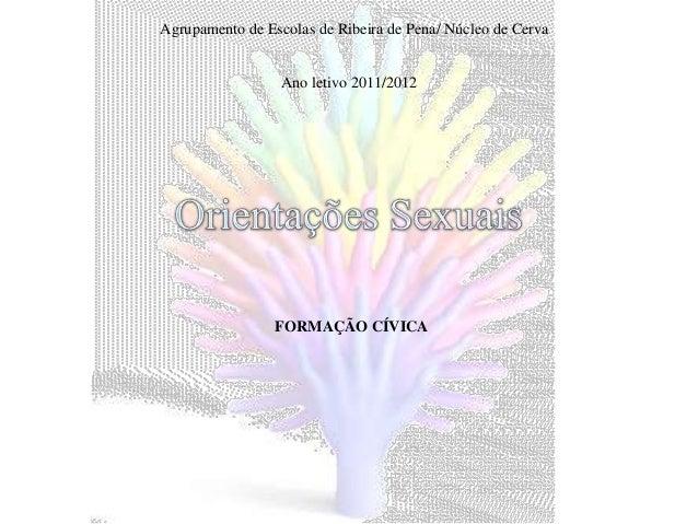 Agrupamento de Escolas de Ribeira de Pena/ Núcleo de Cerva                  Ano letivo 2011/2012                 FORMAÇÃO ...