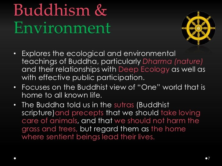 an overview of the concepts of buddhism a world religion History of buddhism religion history essay print reference this he also laid the foundation of abundant stupas and spread the teachings of buddha throughout the outside world with asoka encouragement, buddhism could spread to the south of several of them returned with eastern concepts.