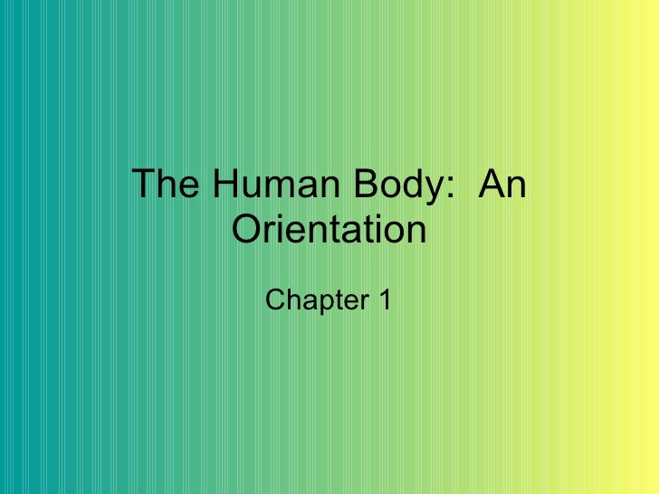 The Human Body:  An Orientation Chapter 1