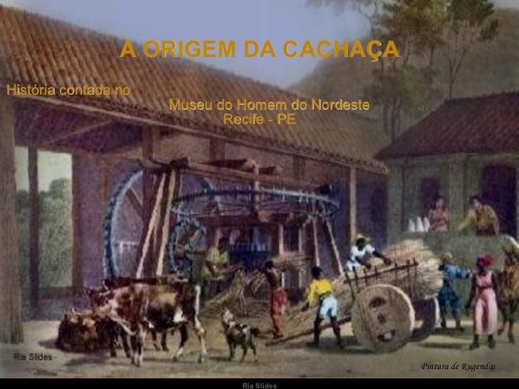 A ORIGEM DA CACHAÇA História contada no  Museu do Homem do Nordeste  Recife - PE Pintura de Rugendas