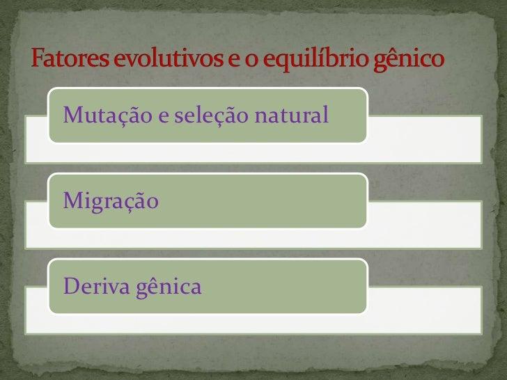 Mutação e seleção naturalMigraçãoDeriva gênica