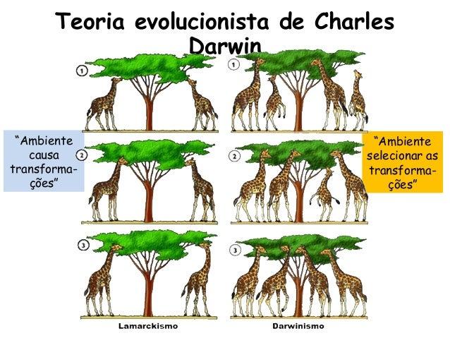 charles darwin teori