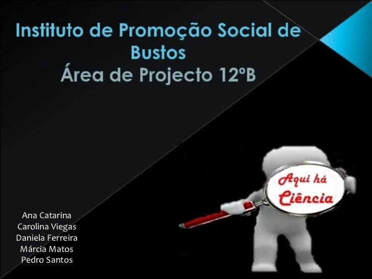 Instituto de Promoção Social de Bustos Área de Projecto 12ºB<br />Ana Catarina<br />Carolina Viegas<br />Daniela Ferreira<...