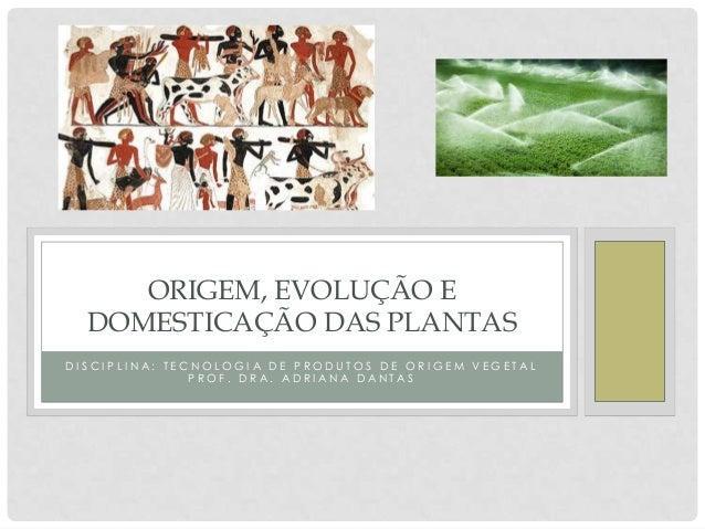 ORIGEM, EVOLUÇÃO E DOMESTICAÇÃO DAS PLANTAS DISCIPLINA: TECNOLOGIA DE PRODUTOS DE ORIGEM VEGETAL PROF. DRA. ADRIANA DANTAS