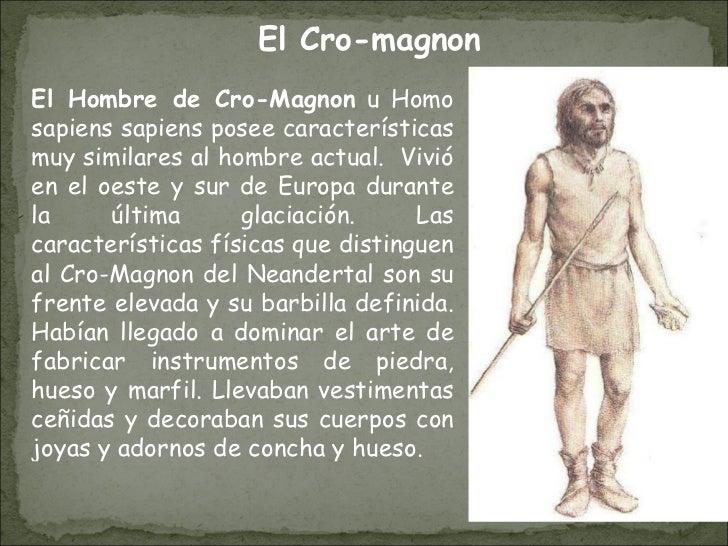 El Hombre de Cro-Magnon  u Homo sapiens sapiens posee características muy similares al hombre actual.   Vivió en el oeste ...
