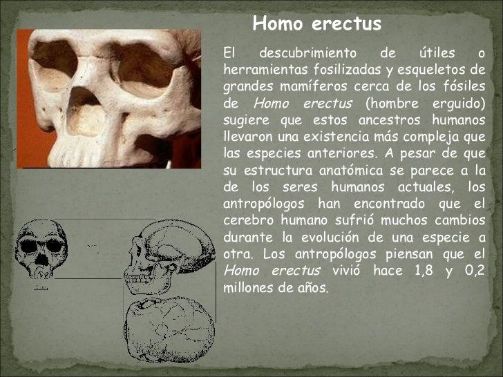 El descubrimiento de útiles o herramientas fosilizadas y esqueletos de grandes mamíferos cerca de los fósiles de  Homo ere...