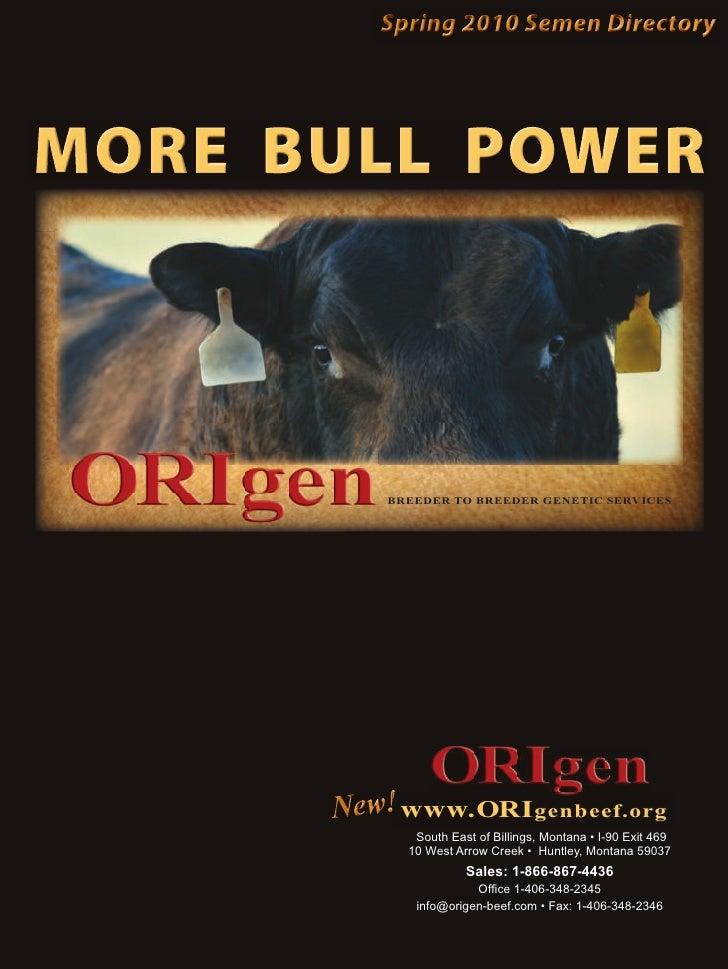 Spring 2010 Semen Directory     MORE BULL POWER             BREEDER TO BREEDER GENETIC SERVICES           New! www.ORI gen...
