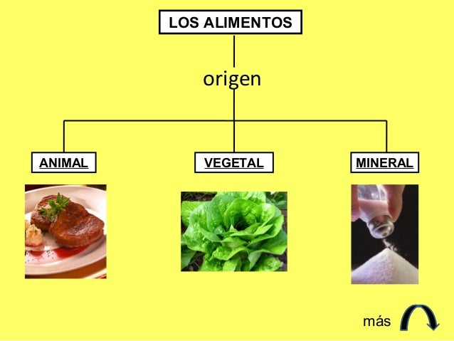 LOS ALIMENTOS            origenANIMAL      VEGETAL      MINERAL                         más