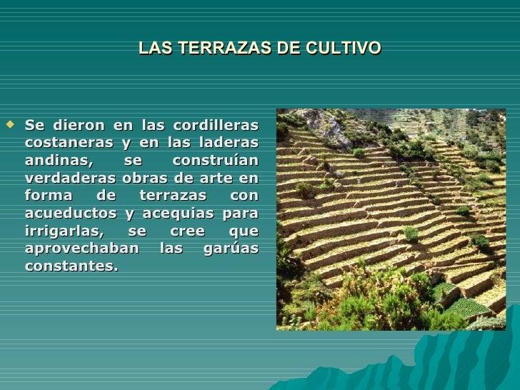 Origen De La Agricultura162