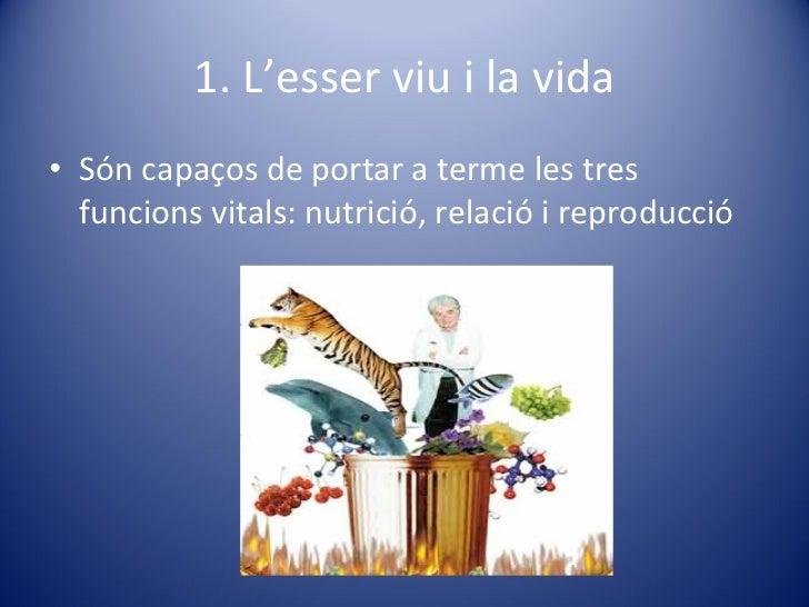 1. L'esser viu i la vida <ul><li>Són capaços de portar a terme les tres funcions vitals: nutrició, relació i reproducció <...