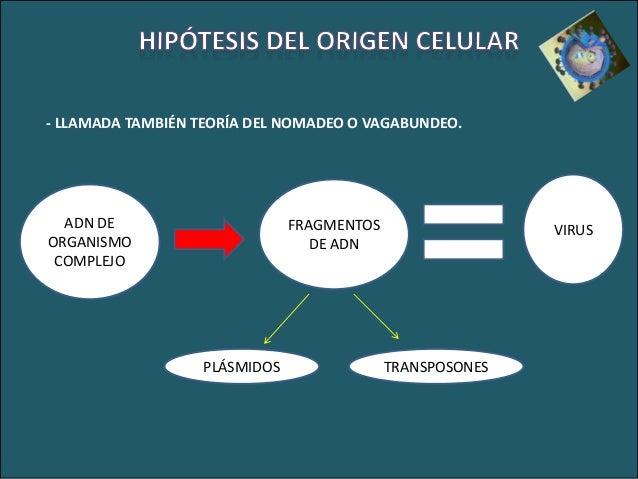 Los parásitos en el organismo como comprender
