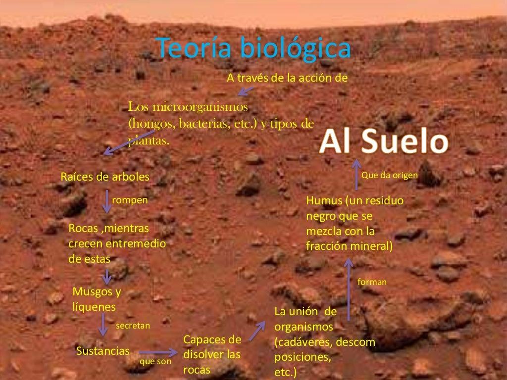 Origen del suelo for Significado de suelo