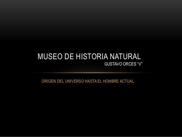 "ORIGEN DEL UNIVERSO HASTA EL HOMBRE ACTUALMUSEO DE HISTORIA NATURALGUSTAVO ORCES ""V"""