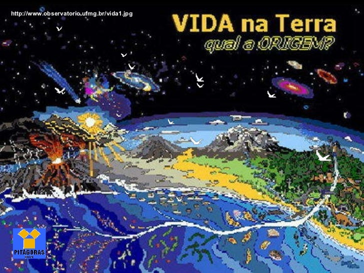 http://www.observatorio.ufmg.br/vida1.jpg