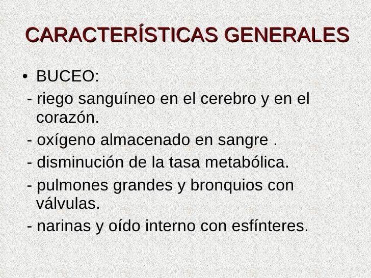 CARACTERÍSTICAS GENERALES <ul><li>BUCEO: </li></ul><ul><li>- riego sanguíneo en el cerebro y en el corazón. </li></ul><ul>...