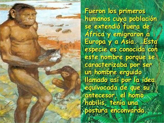 Origen y evolucion del hombre 1
