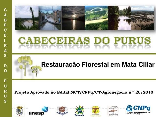 CABECEIRASDOPURUSRestauração Florestal em Mata CiliarProjeto Aprovado no Edital MCT/CNPq/CT-Agronegócio n º 26/2010Conselh...