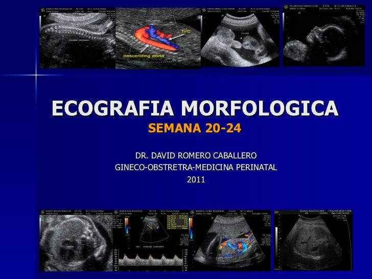 ECOGRAFIA MORFOLOGICA SEMANA 20-24 DR. DAVID ROMERO CABALLERO GINECO-OBSTRETRA-MEDICINA PERINATAL 2011