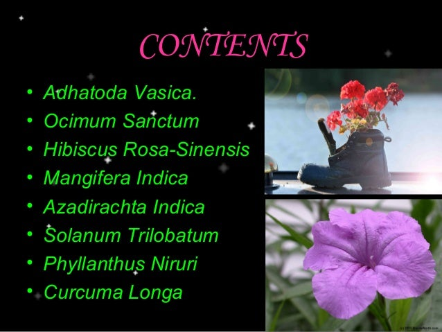 Medicinal Plants Their Uses