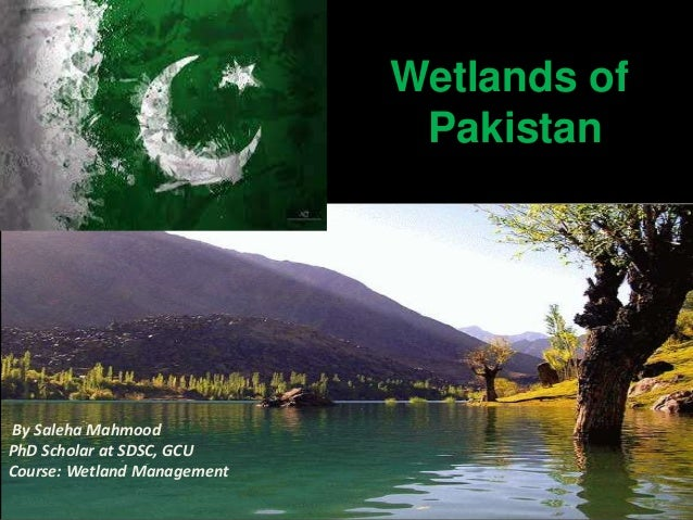 pakistan wetland program Wetlands of pakistan: management and conservation  six meters is called wetland pakistan is blessed with about 225 significant  internship program 2017.