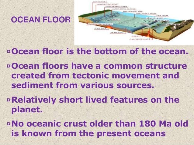 Origin and destruction of ocean floor ppt ocean floor for What is the meaning of floor