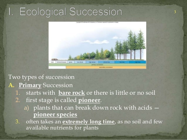 Two types of succession  A. Primary Succession  1. starts with bare rock or there is little or no soil  2. first stage is ...
