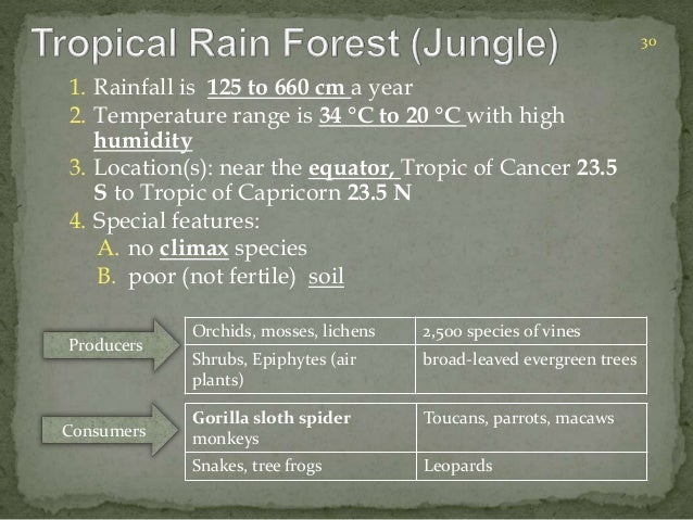 1. Rainfall is 125 to 660 cm a year  2. Temperature range is 34 °C to 20 °C with high  humidity  3. Location(s): near the ...
