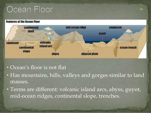 10  • Ocean's floor is not flat  • Has mountains, hills, valleys and gorges similar to land  masses.  • Terms are differen...