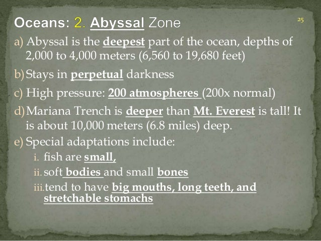 a) Abyssal is the deepest part of the ocean, depths of  2,000 to 4,000 meters (6,560 to 19,680 feet)  b) Stays in perpetua...