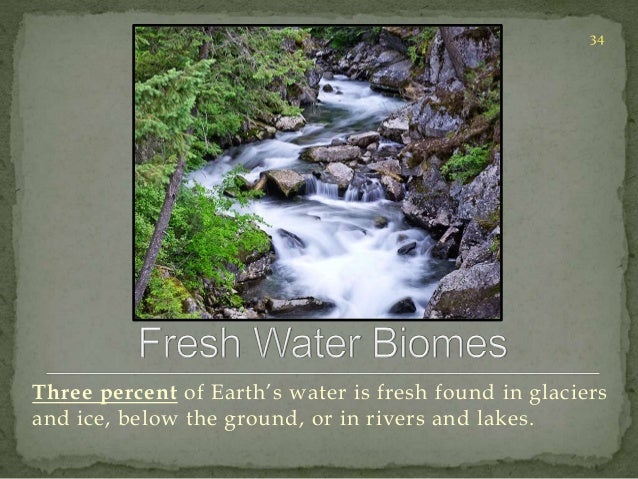 34  Three percent of Earth's water is fresh found in glaciers  and ice, below the ground, or in rivers and lakes.