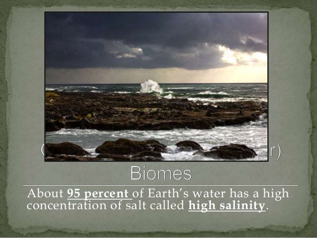 About 95 percent of Earth's water has a high  concentration of salt called high salinity.