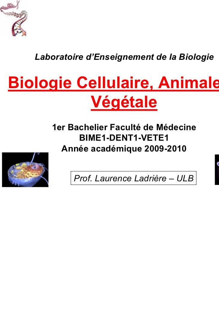 Laboratoire d'Enseignement de la BiologieBiologie Cellulaire, Animale et          Végétale      1er Bachelier Faculté de M...