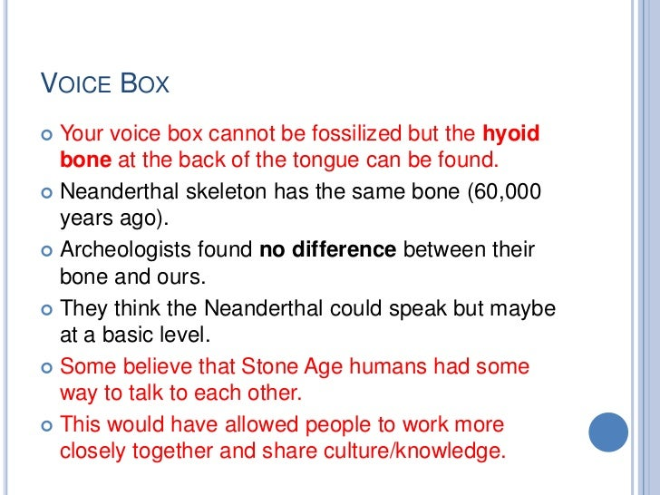 VOICE BOX Your voice box cannot be fossilized but the hyoid  bone at the back of the tongue can be found. Neanderthal sk...