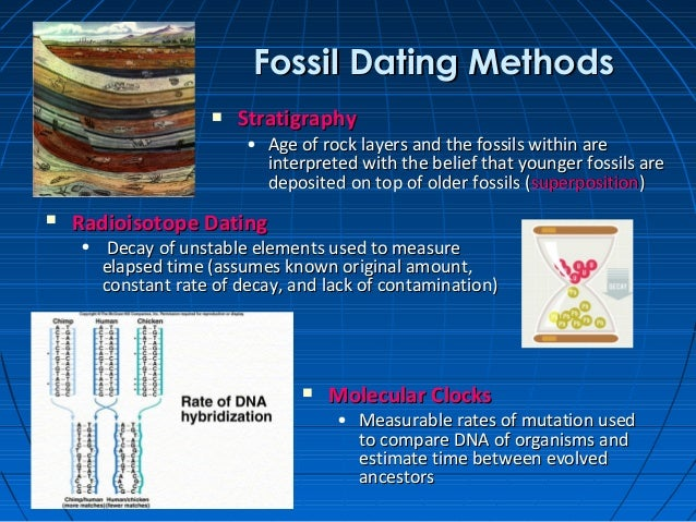 Radioactive dating methods contribute to the study of evolution