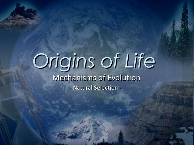 Origins of Life  Mechanisms of Evolution      - Natural Selection -