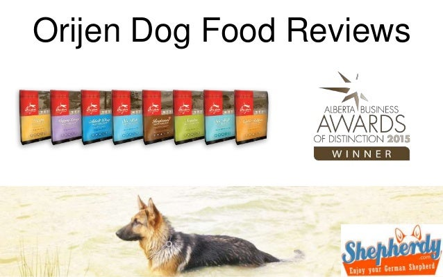 Abound Dry Dog Food Reviews