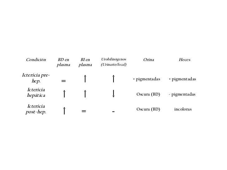 • UrobilinaNormalmente positiva.Aumenta en anemia hemolítica por gran producción debiliirubina que lleva a una mayor excre...