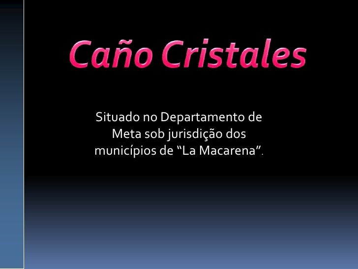 "Caño Cristales<br />Situado no Departamento de Meta sob jurisdição dos municípios de ""La Macarena"".<br />"