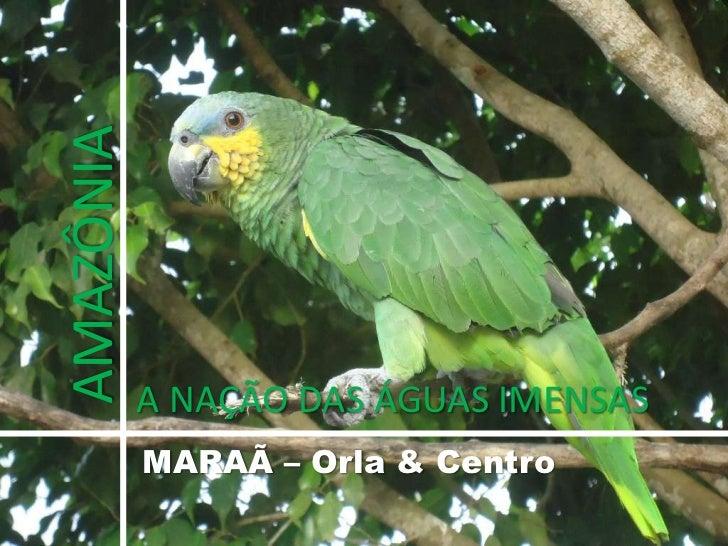 AMAZÔNIA<br />A NAÇÃO DAS ÁGUAS IMENSAS<br />MARAÃ – Orla & Centro<br />